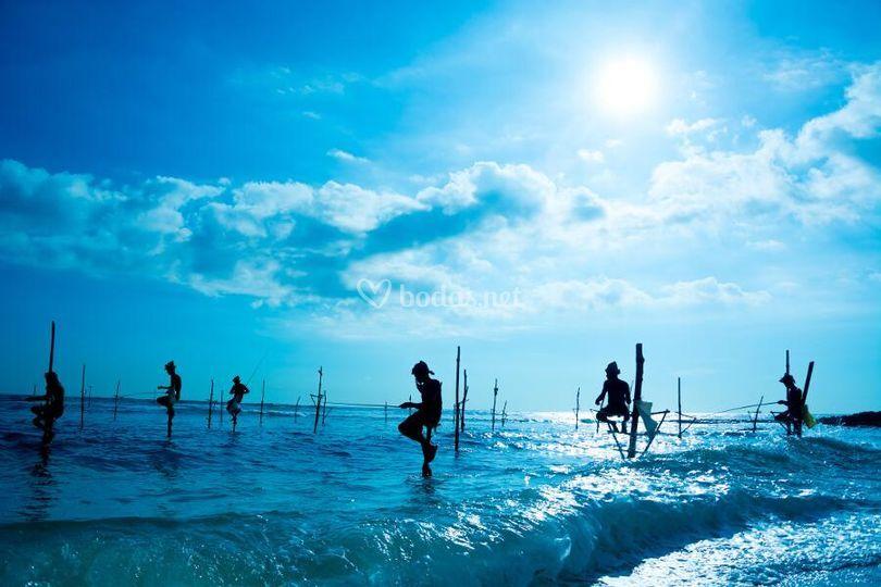 Sri Lanka de norte a sur