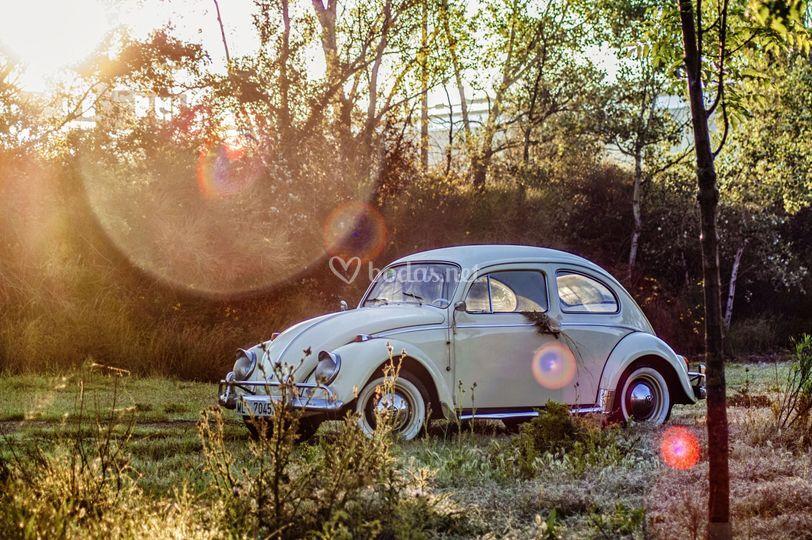 Escarabajo 1200 del año 1963