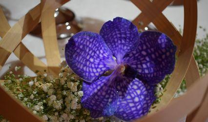 Ceres floristas
