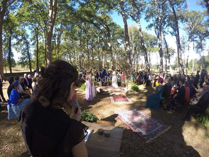 Sonorización en ceremonia