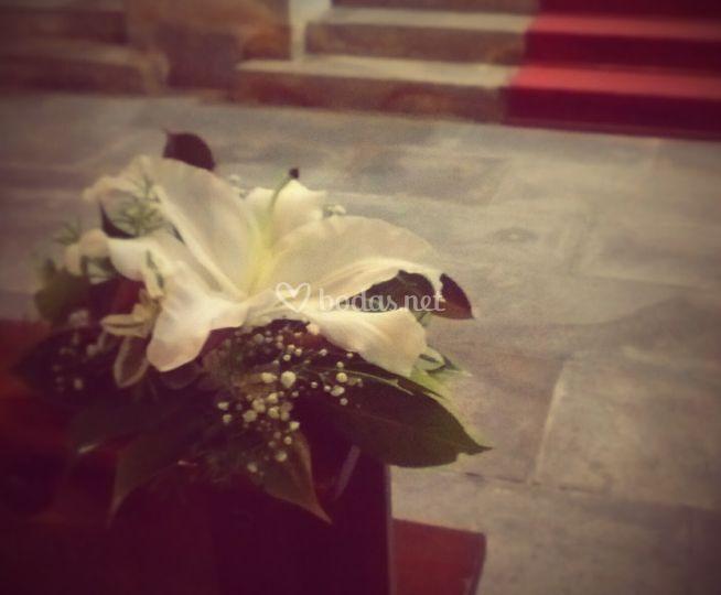 Flor en los bancos