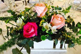 Flores y decoración La Orquídea