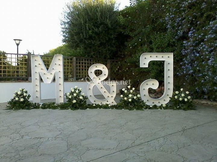 Conjunto de letras y flores