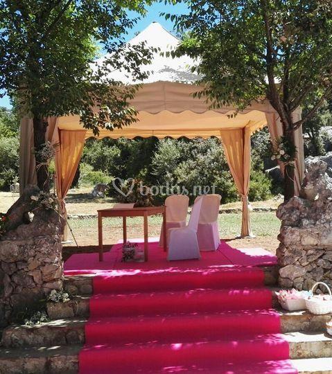 Templete boda