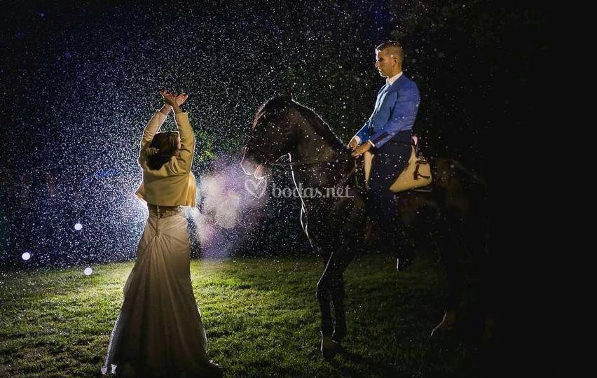 Sevillanas con novia y caballo