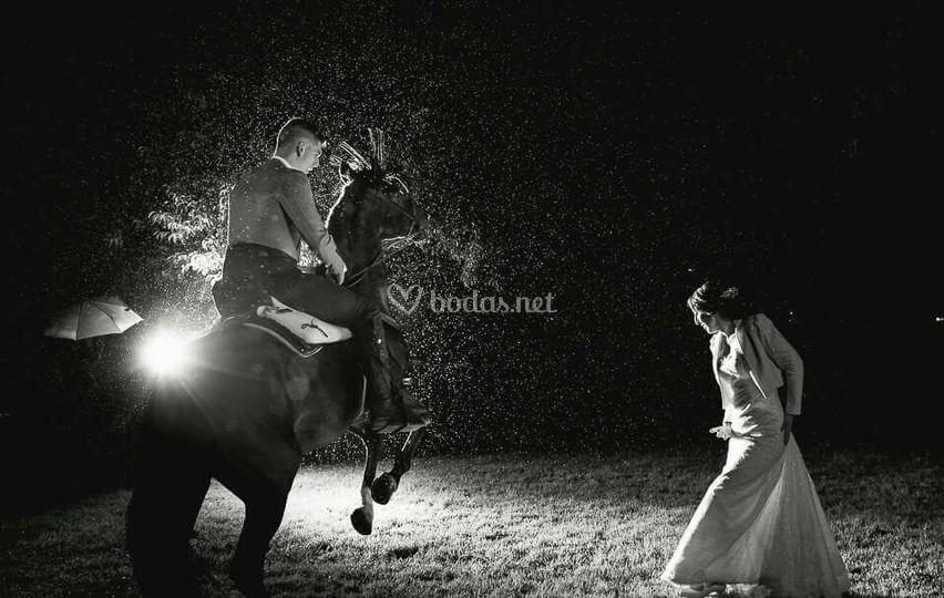 Sevillanas con caballos