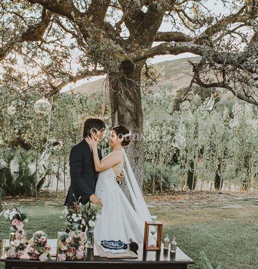 Ceremonia debajo del árbol