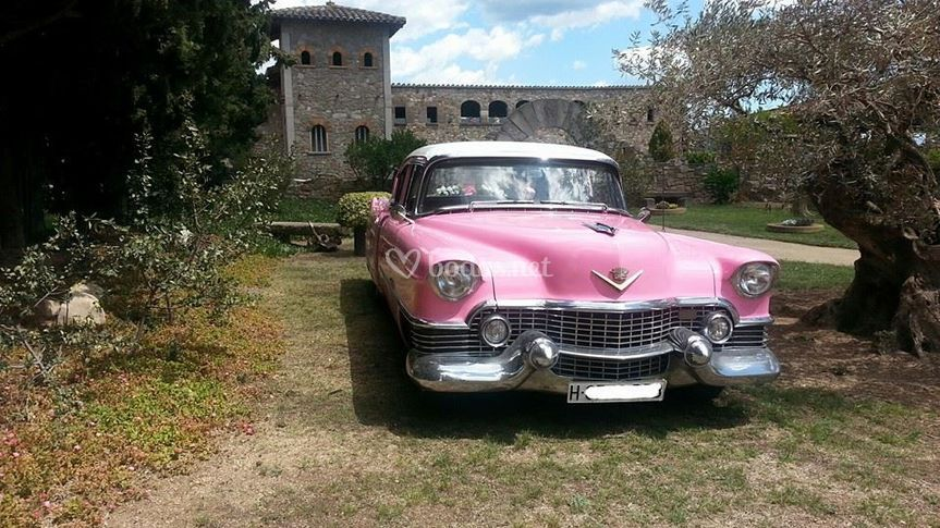 Cadillac 54