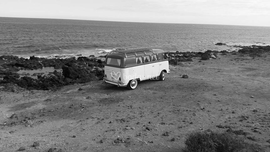 El vehículo