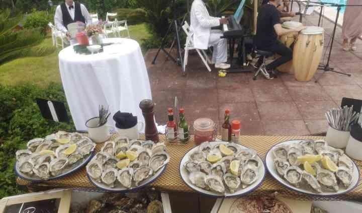 Variedad ostras