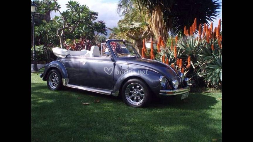 El coche de vuestra boda