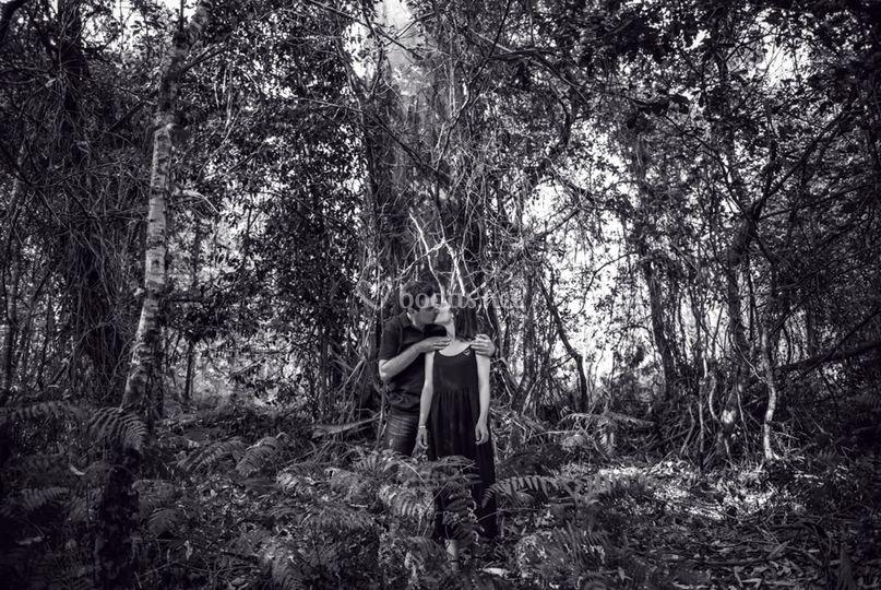 N+F en el bosque de Segude