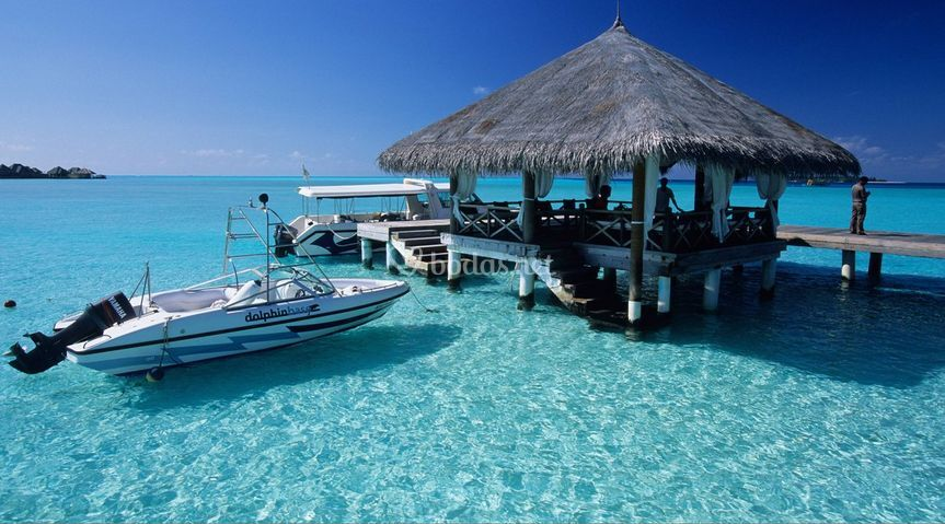 Paraíso Tours