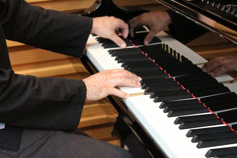 Concierto de solista