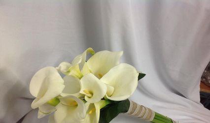 Flores Lola