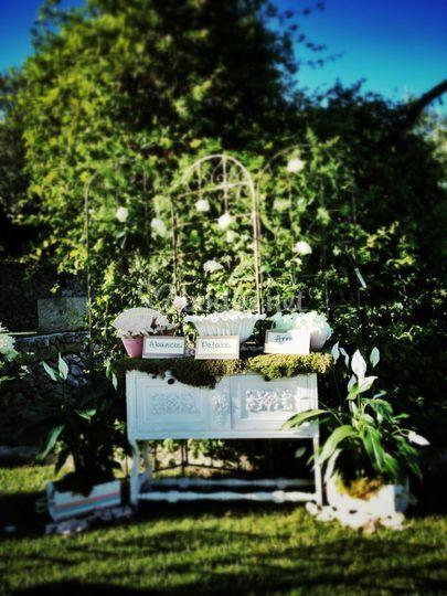 Set de invitados en jardín