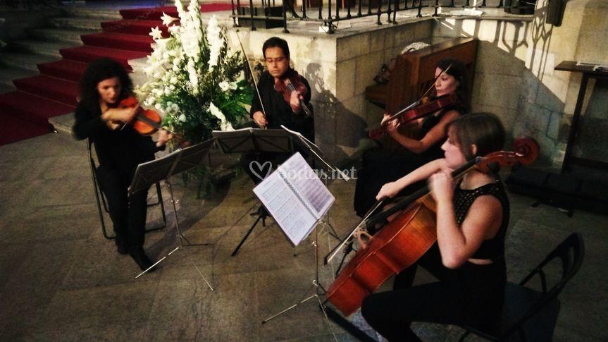 Cuarteto de cuerda Barcelona