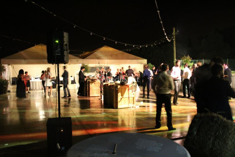 Baile noche carpa