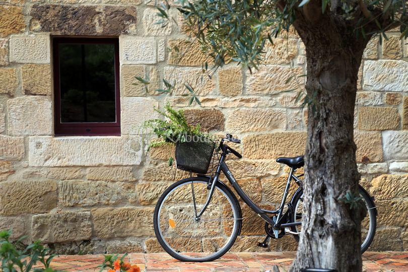 Detalle de la bicicleta