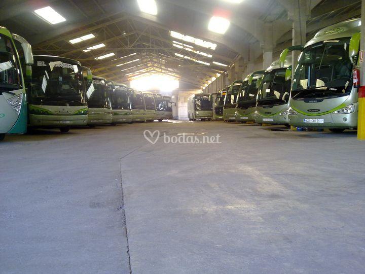 Flota de 30 autobuses