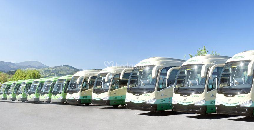 Extensa flota de buses
