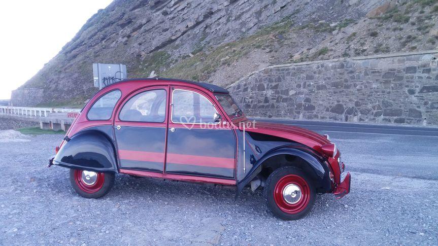 Elegante coche