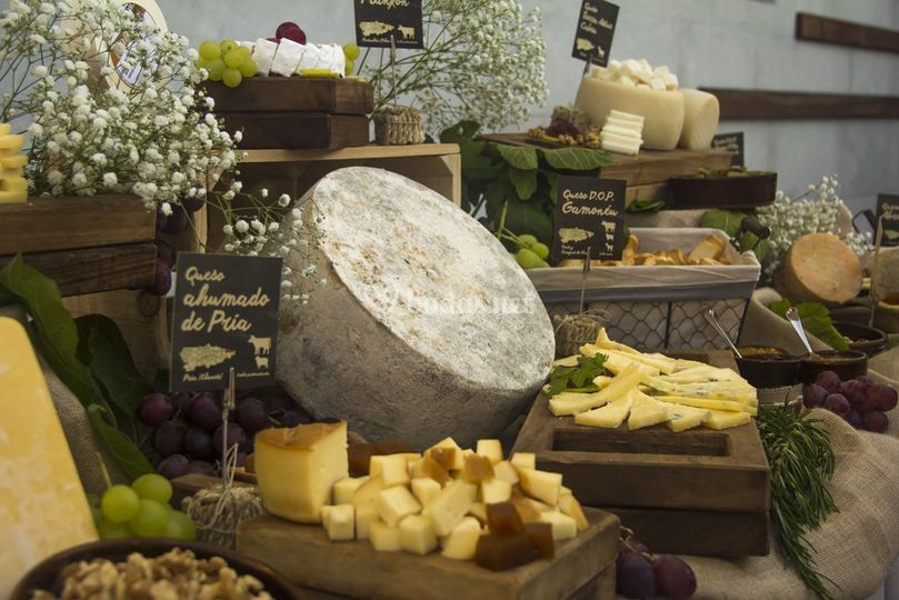 Los mejores quesos