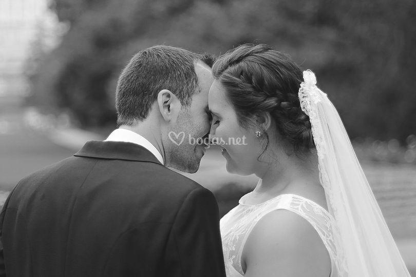 Foto/vídeo de bodas en Madrid
