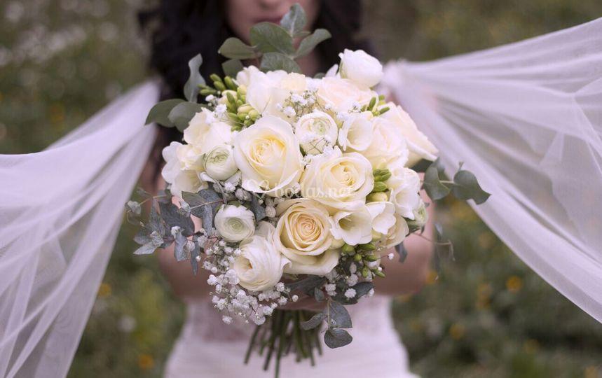 Ramo: Flors Bertràn
