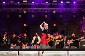 Son de Flamenco
