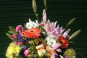 Floristeria Edelweiss