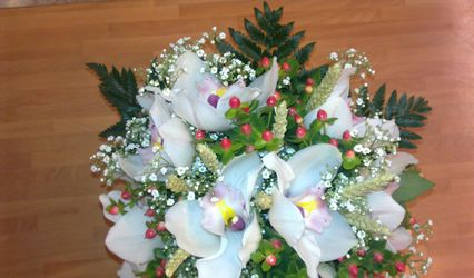 Flores Osuna