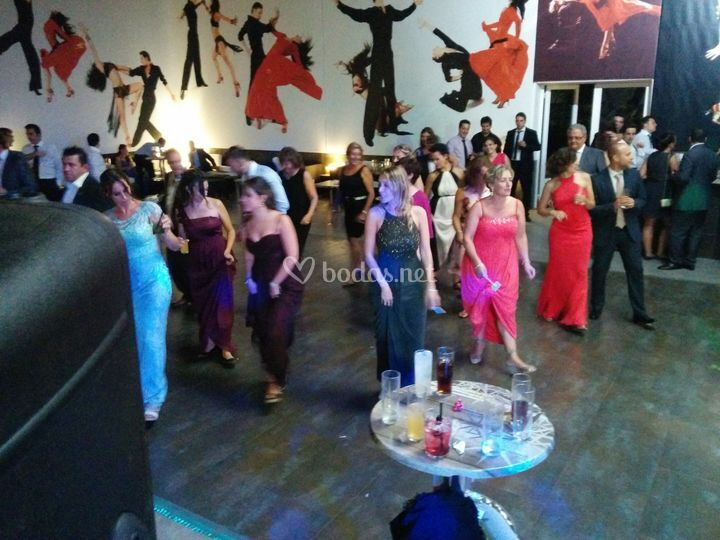 Baile Boda Jadraque S&J