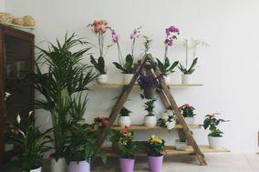 Vania diseño floral