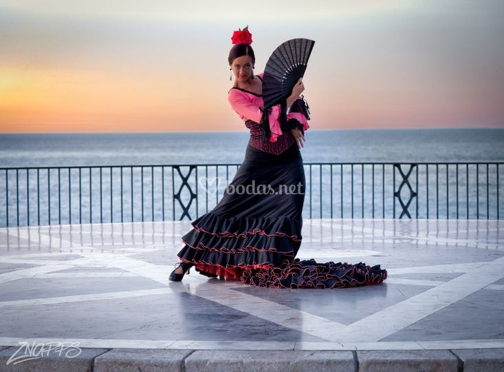 Flamenco La Caoba