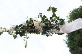 Les flors d'Amelie