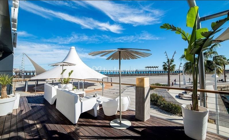 Ocean Race Club - Q-Linaria Catering