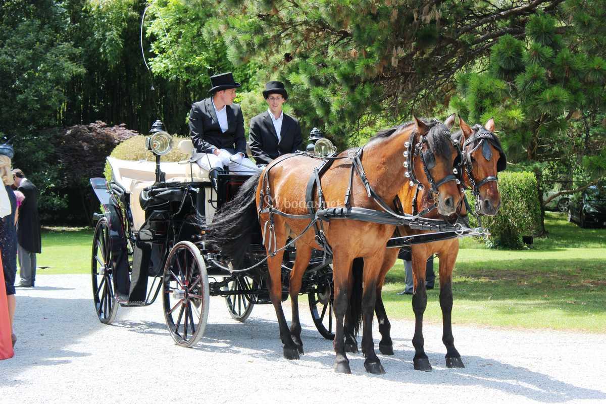 Coche de caballos y cocheros