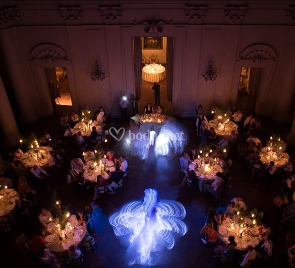 Crystal wings dance of light