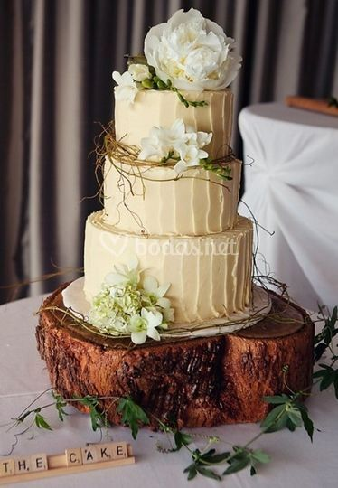 Rustic cake tecnica naked