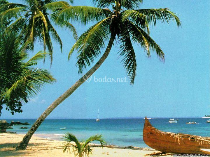 Caribe... como siempre todo incluido