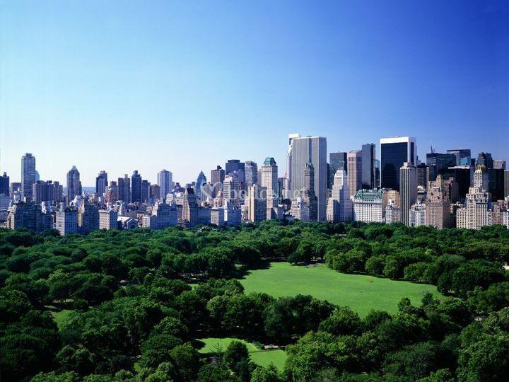 New York...Un destino siempre de moda