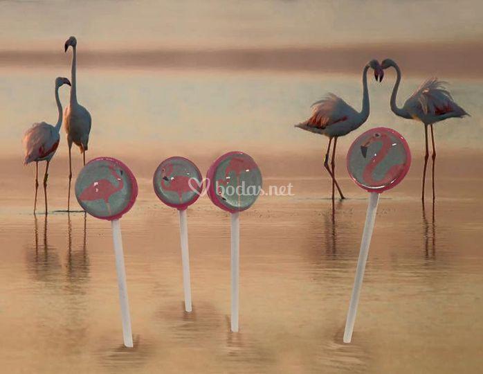 Lollipops Flamingos