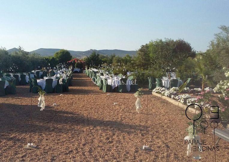 Zona del banquete