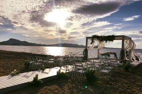 Trips – Undersun Bodas&Events