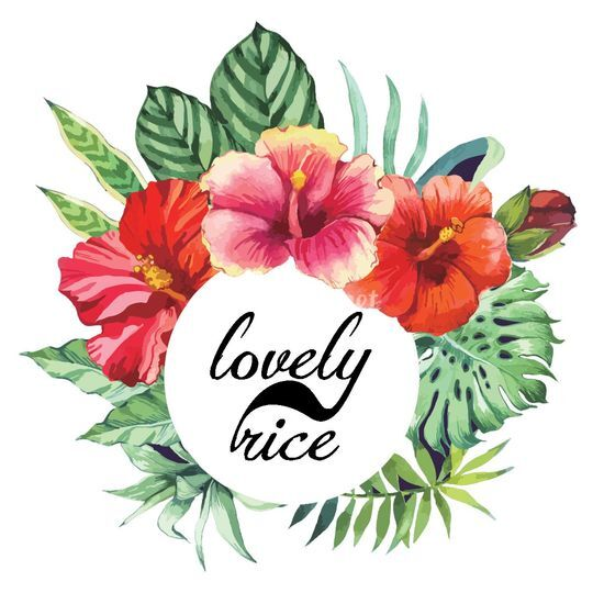 Lovely Rice - Wedding Planner