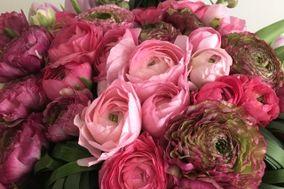 Flores con Ángel