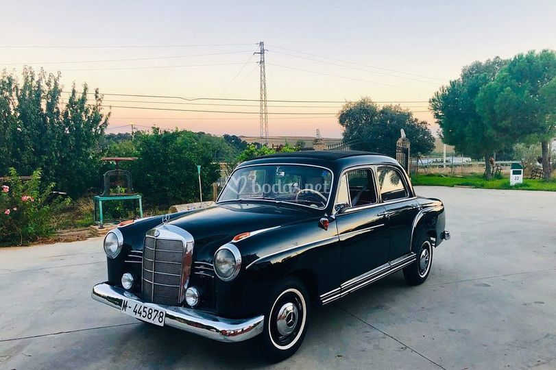 Mercedes ponton