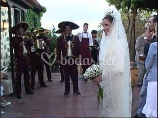Luceros del norte en boda (Santa Brigida)