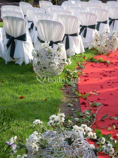 Detalle alfombra roja